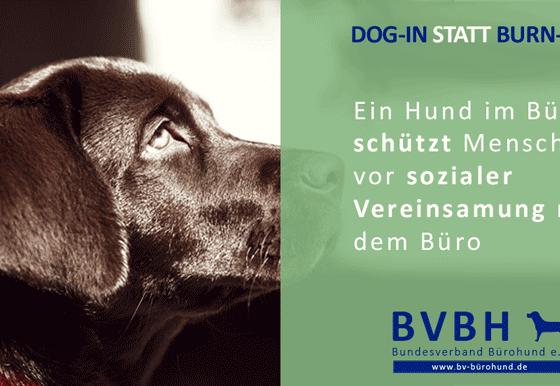 Infocard: Bürohund – Schützt vor Vereinsamung