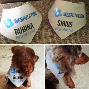 Webputation Bürohund