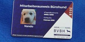 Mitarbeiterausweis Bürohund